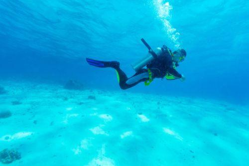 Dubai activities - Al Boom Diving